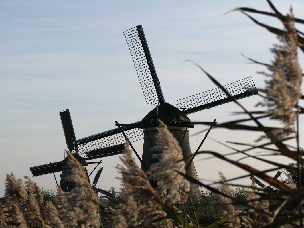 A couple of windmills up close