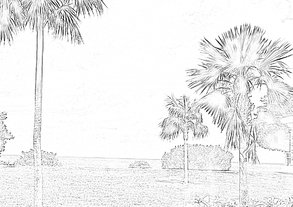 2 Tropical Beach Scene Click Here To Get Coloring Page