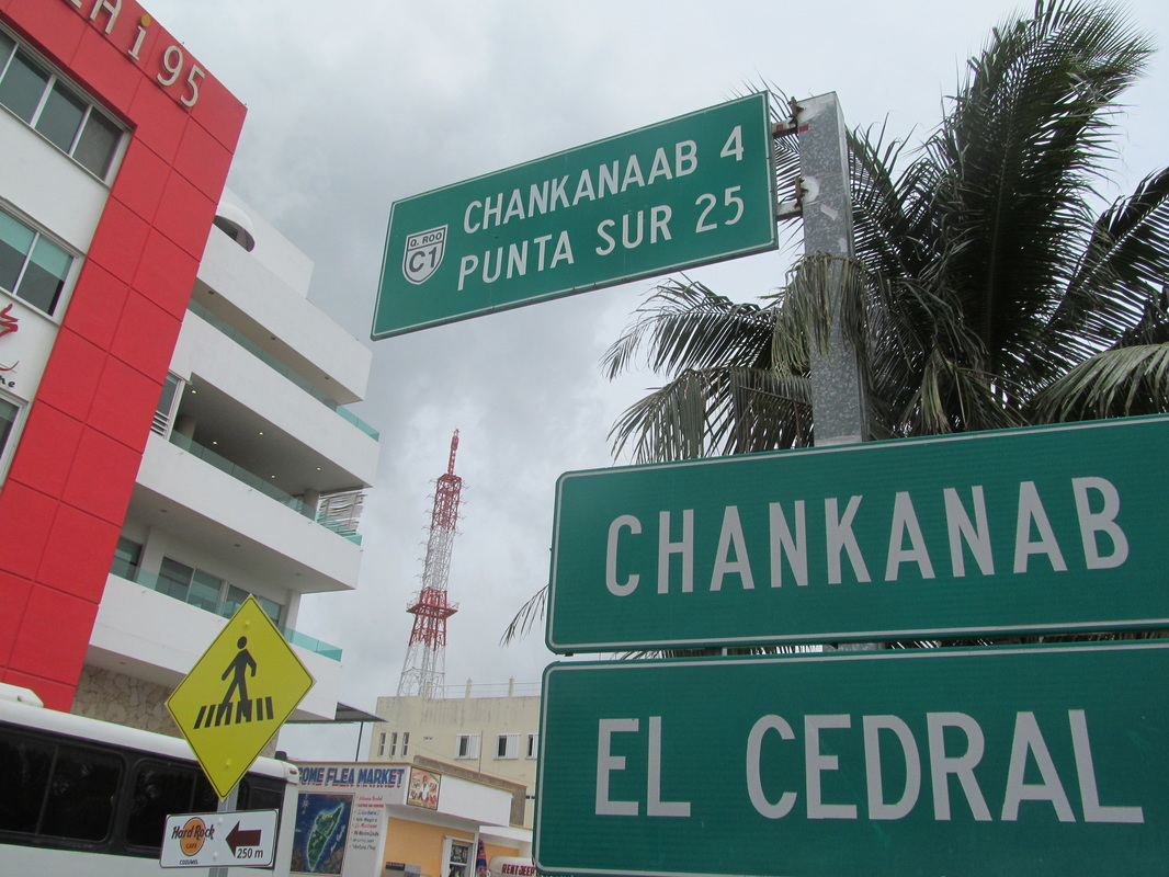 Cozumel Road Signs