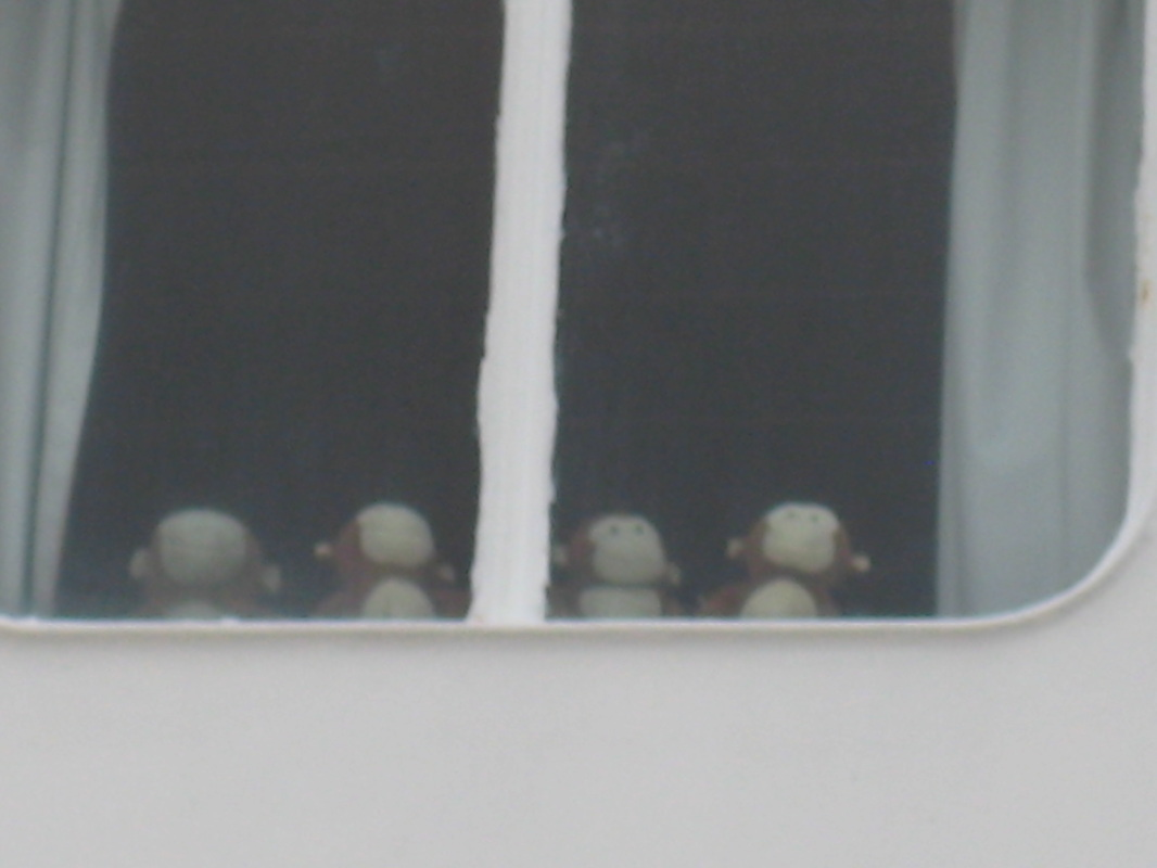 Window Monkeys