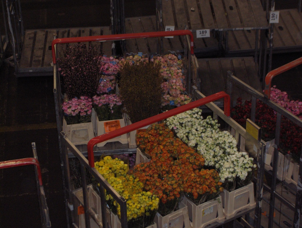 Carts of flowers move into auction room