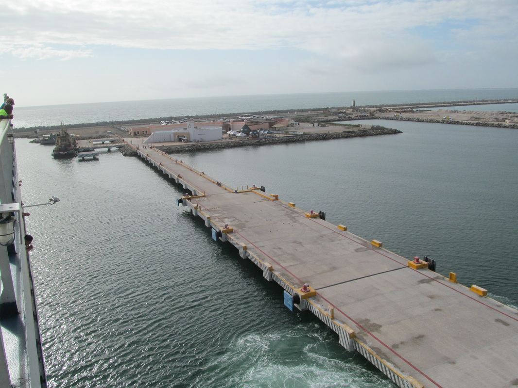 Carnival Elation Docking in Progreso