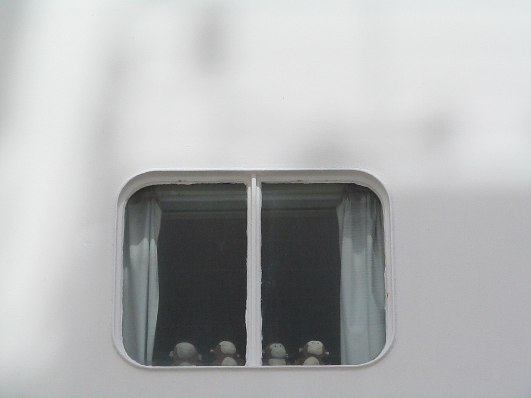 Cruise Ship Window Monkeys