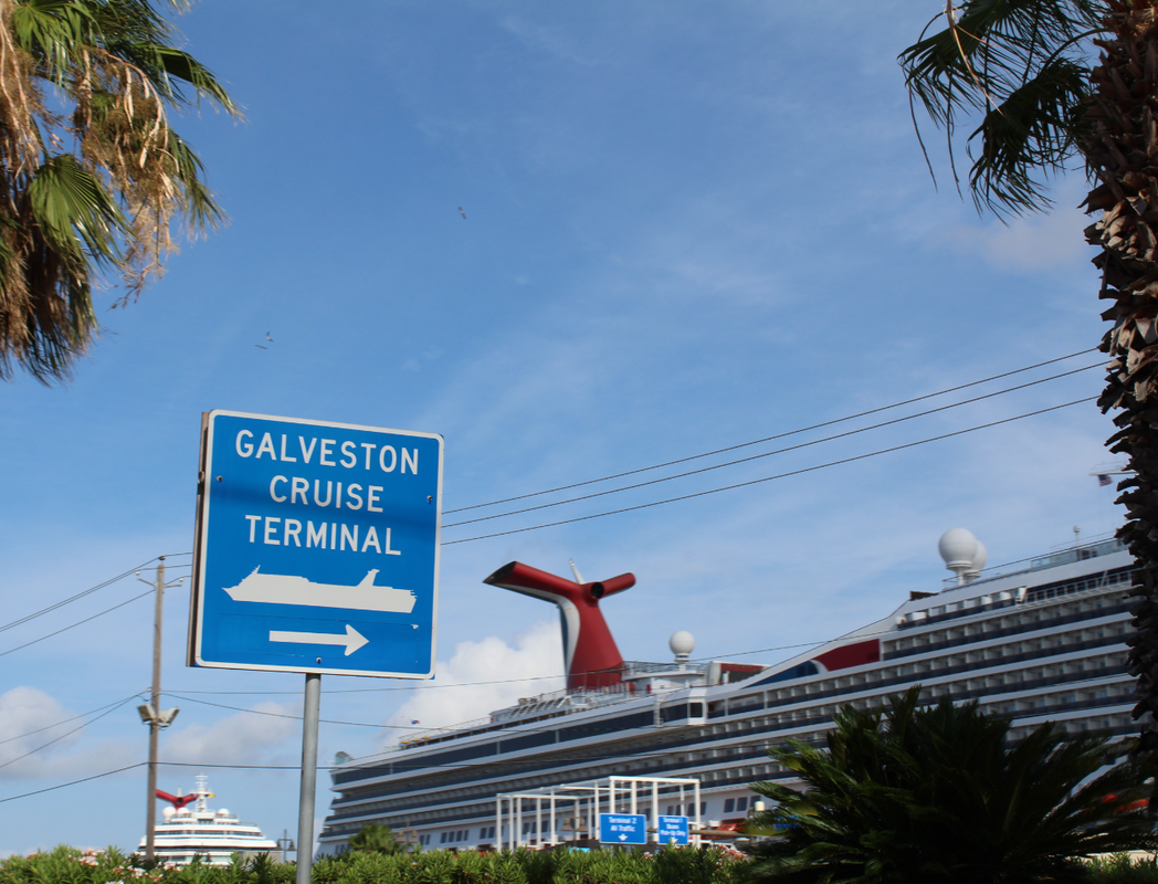 Carnival Magic, Carnival Freedom, and Carnival Triumph