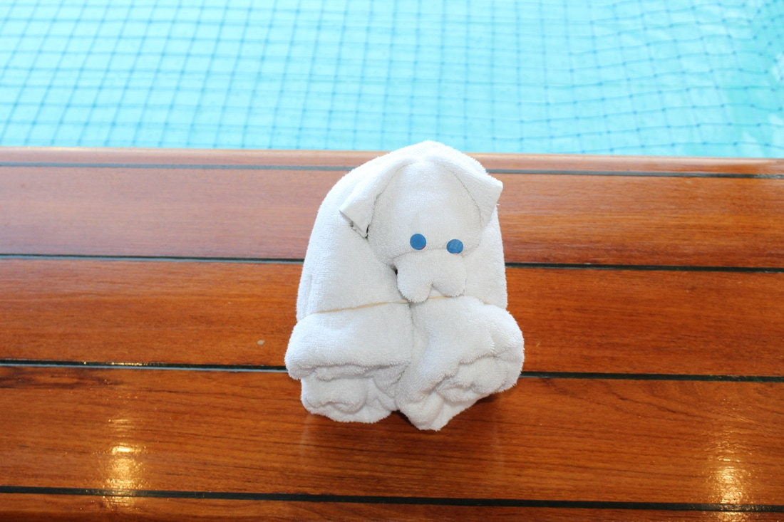 Carnival Valor Towel Animal