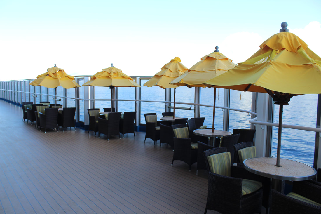 Carnival Valor Chocolate Panna Cotta