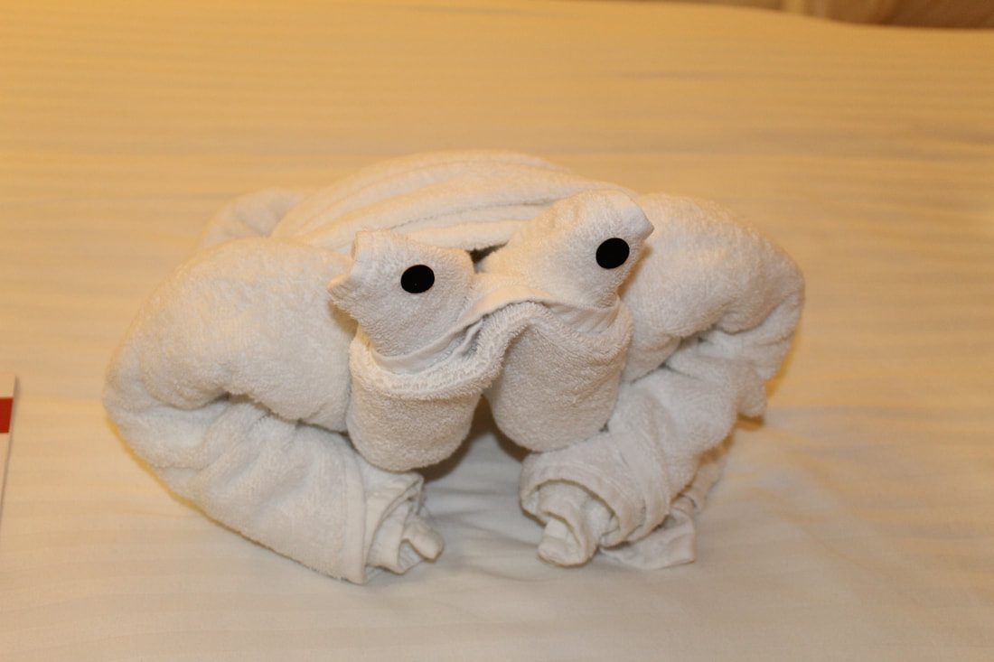 Carnival Valor Towel Animal Frog