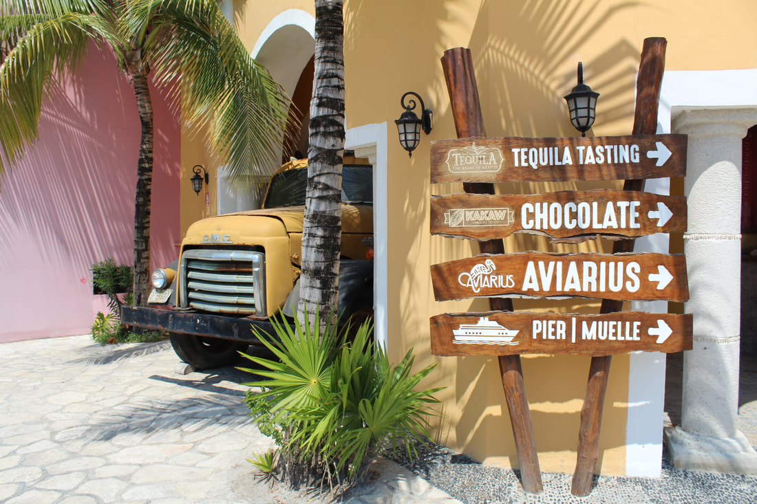 Carnival Vista Chicken Taco With Guacamole and Watermelon