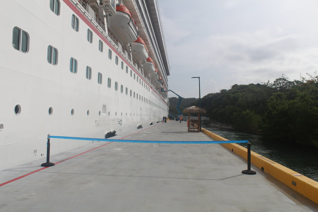 Carnival Freedom