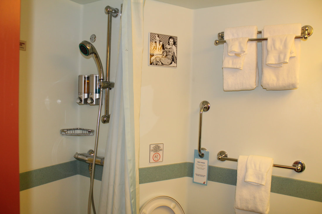 Carnival Dream Deluxe Ocean View Stateroom Shower